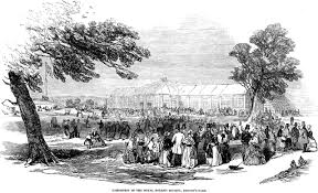 on the horticultural origins of victorian glasshouse culture