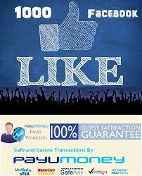 facebook fan page followers buy facebook likes 5000 brand indidigital digital marketing