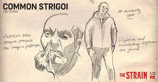 Seeking Strain Episode Strigoi The Strain Wiki Fandom Powered By Wikia