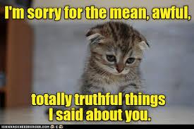 Funny Sorry Memes - apology lolcats lol cat memes funny cats funny cat