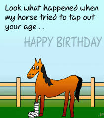 Horse Birthday Meme - funny birthday wishes images happy birthday memes 2017