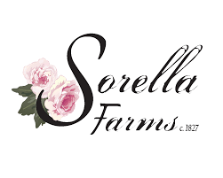 wedding venues in lynchburg va sorella farms c 1827 barn wedding venue minutes from lynchburg va