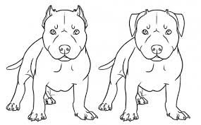 pitbull coloring pages alric coloring pages