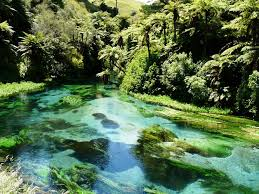 Cool Off With A Walk by 12 Stunning Auckland Walks Viva