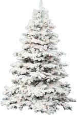 white pre lit christmas tree vickerman flocked alaskan multi pre lit christmas tree mini