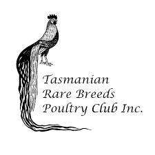 the tasmanian rare breeds poultry club inc preserving rare poultry