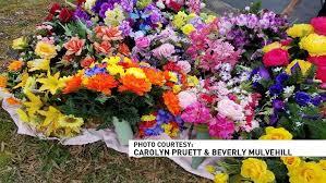 graveside flowers woman pilfering graveside flowers for resale wbma
