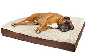 Dog Sofas For Large Dogs by Big Dog Beds For Large Dogs Amazon Com