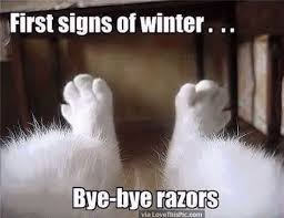 Funny Winter Memes - first sign of wnter funny things pinterest funny winter