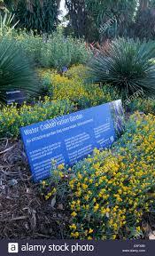 Melb Botanical Gardens by Water Conservation Garden Royal Botanic Gardens Melbourne Victoria