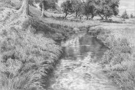drawing grass and weeds tutorial part 1 by diane wright