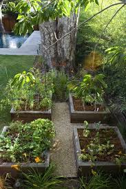 tomato garden landscape contemporary with square foot gardening