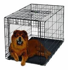 amazon com midwest homes for pets ovation single door dog crate