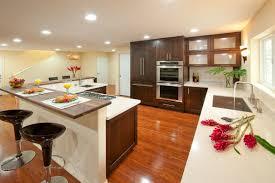 kitchen style modern espresso tropical kitchen cabinets black