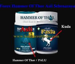 forex hammer of thor asli sebenarnya apa klg herbal