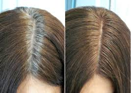 highlights to hide greyhair best way to hide gray hair with highlights hairs picture gallery