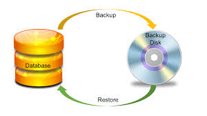 Oracle Dba Resume Example Db2 Backup And Recovery