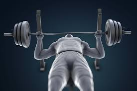 the bench press weight training exercise