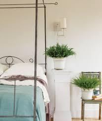 plante verte dans une chambre à coucher la plante verte cool plante verte chambre a coucher idées