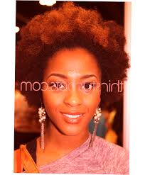 african american natural hairstyles new style for 2016 ellecrafts