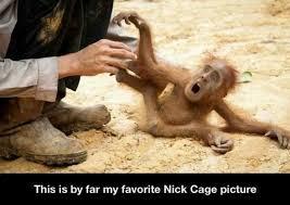 Nic Cage Meme - nic cage meme by burningfire45 memedroid