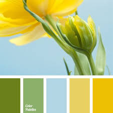 Yellow Color Combinations 85 Best Yellow Colors Images On Pinterest Colors Kitchen Colors