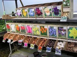 Cheap Backyard Makeovers by Garden Design Garden Design With Fall Bulbplanting Primer Fresh