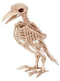 Plastic Halloween Skeletons Amazon Com Crazy Bonez Skeleton Raven Toys U0026 Games