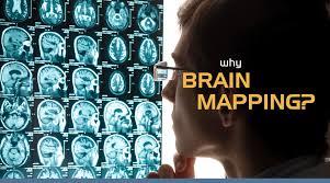 Brain Mapping Why Brain Mapping Brain Mapping Medical Research Organization