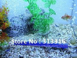 více než 25 nejlepších nápadů na pinterestu na téma aquarium