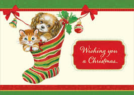 kitten and puppy in stocking box of 18 cat and dog christmas cards