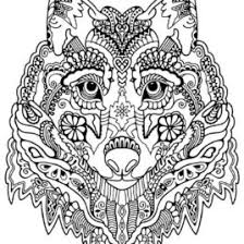 Detailed Coloring Pages Coloring Page Of Wolf Head Kids Drawing And Coloring Pages by Detailed Coloring Pages