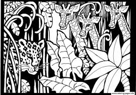 africa giraffes to print coloring pages printable