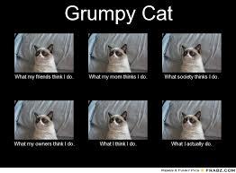 Meme Generator What I Do - grumpy cat meme no images of images of grumpy cat meme generator