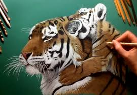 colored pencil drawing on green paper tiger u0026 cub speed draw