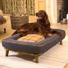 bedroom interesting amazing proper extra large dog beds modern