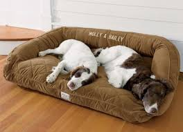 Comfortable Dog 40 Best Dog Beds Images On Pinterest Animals Puppies And Diy