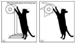 Toilet Paper Roll Meme - the way the toilet paper rolls your best arguments toilet paper