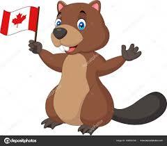 cartoon beaver holding canadian flag u2014 stock vector tigatelu