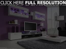 luxury modern living room with purple wall paint combined white