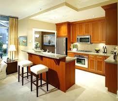 apartment kitchen design ideas pictures open kitchen designs in small apartments small apartment kitchen