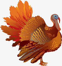 thanksgiving turkey turkey thanksgiving png image for