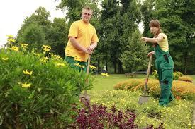 garten und landschaftsbau ausbildung gärtner in für garten und landschaftsbau landeshauptstadt dresden