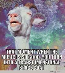 Spiritual Memes - 10 goat memes to cheer you up