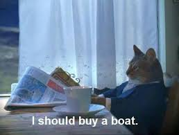 Cat Meme Boat - i should buy a boat cat meme origins and exles