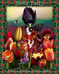 Japanese Language Of Flowers - bella u0027s tulip meaning according to the language of flowers