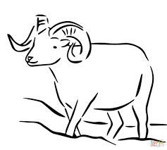 alaska dall sheep coloring page free printable coloring pages