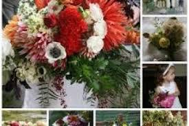 Bulk Flowers Bulk Flowers Uk 4k Wallpapers