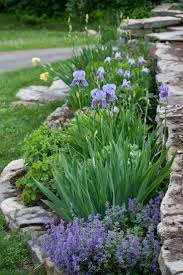 Raised Rock Garden by 25 Best Rock Wall Gardens Ideas On Pinterest Rock Wall Garden