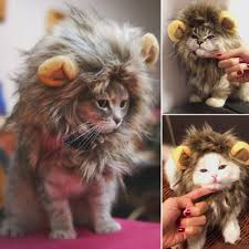 Pet Cat Halloween Costumes Furry Pet Hat Costume Lion Mane Wig For Cat Halloween Dress Up
